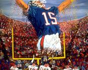 Triumph in Tampa Super Bowl XXV