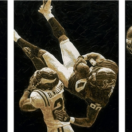Andre Johnson Houston Texans Painting